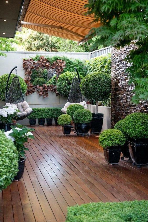 گیاهان مناسب روف گاردن